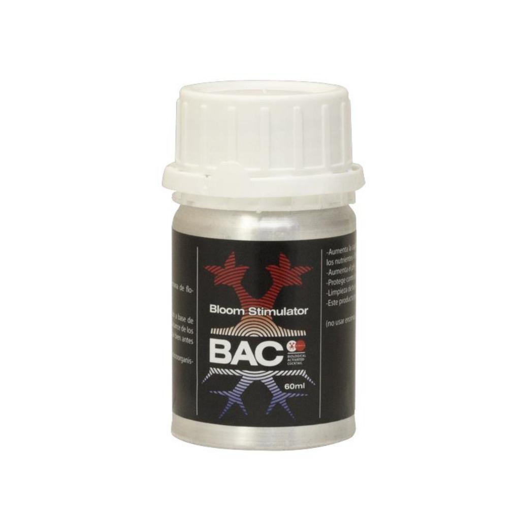 BACC0013